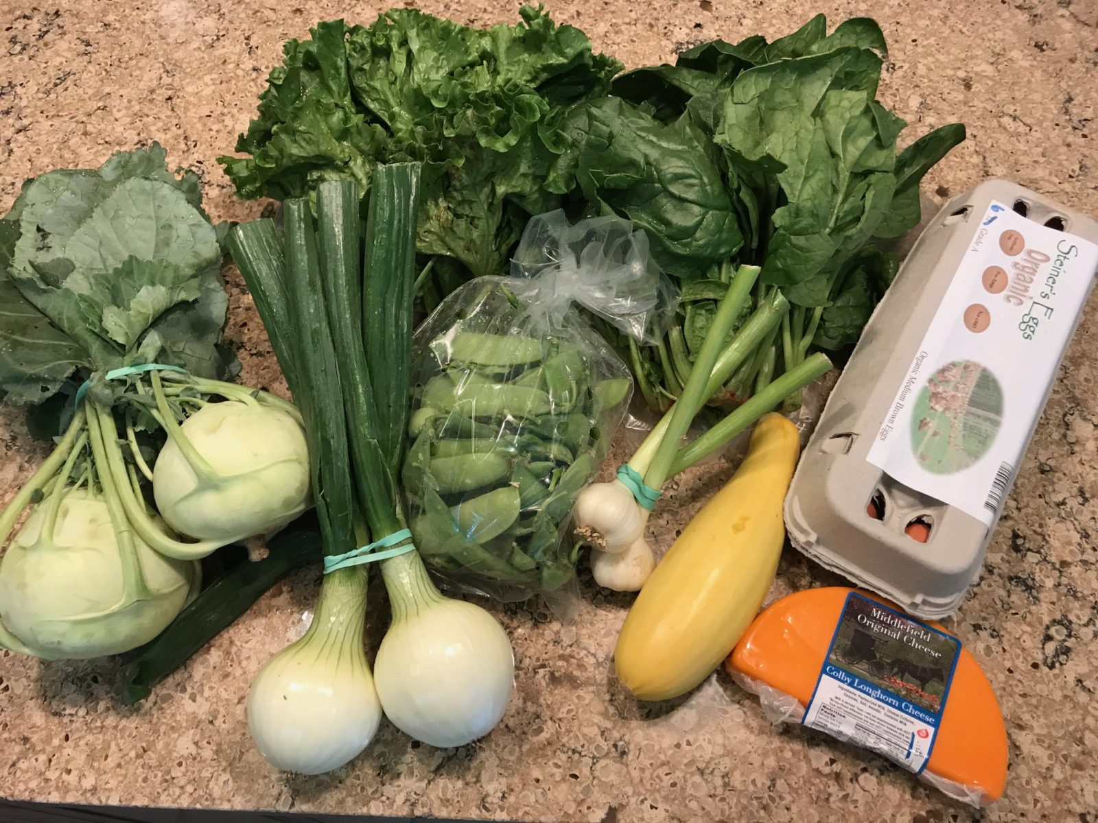 Onions, leaf lettuce, garlic, kohlrabi, yellow squash, pea pods, eggs and cheese